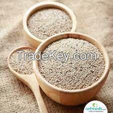Seaseme seeds