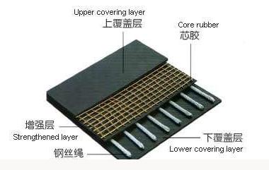 Special transverse reinforcement layer for conveyor belt