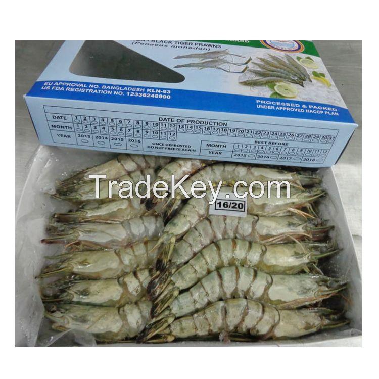 Black Tiger Shrimp for sale