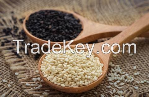Fresh Hot Selling White Sesame Seeds
