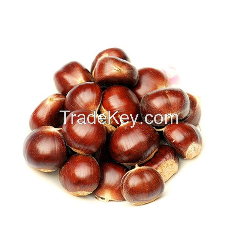new season small bag packaged Organic Roasted Chestnuts with shell