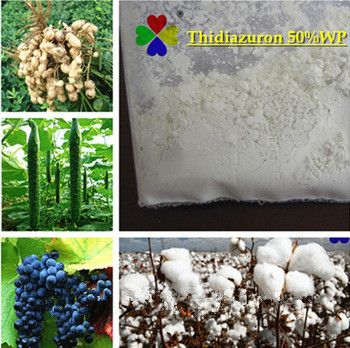 High Quality Plant Growth Regulator Thidiazuron TDZ 98% TC Agrochemicals