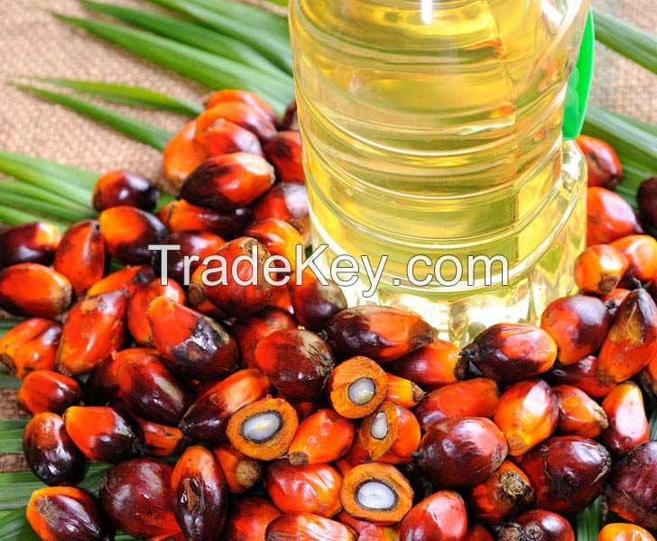 REFINED PALM OIL / Red Palm Oil / Crude Palm Oil
