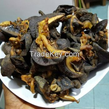 Giant African Land Snails for sale,High Quality Edible Snails Frozen,Dried ,Fresh Snails For sale