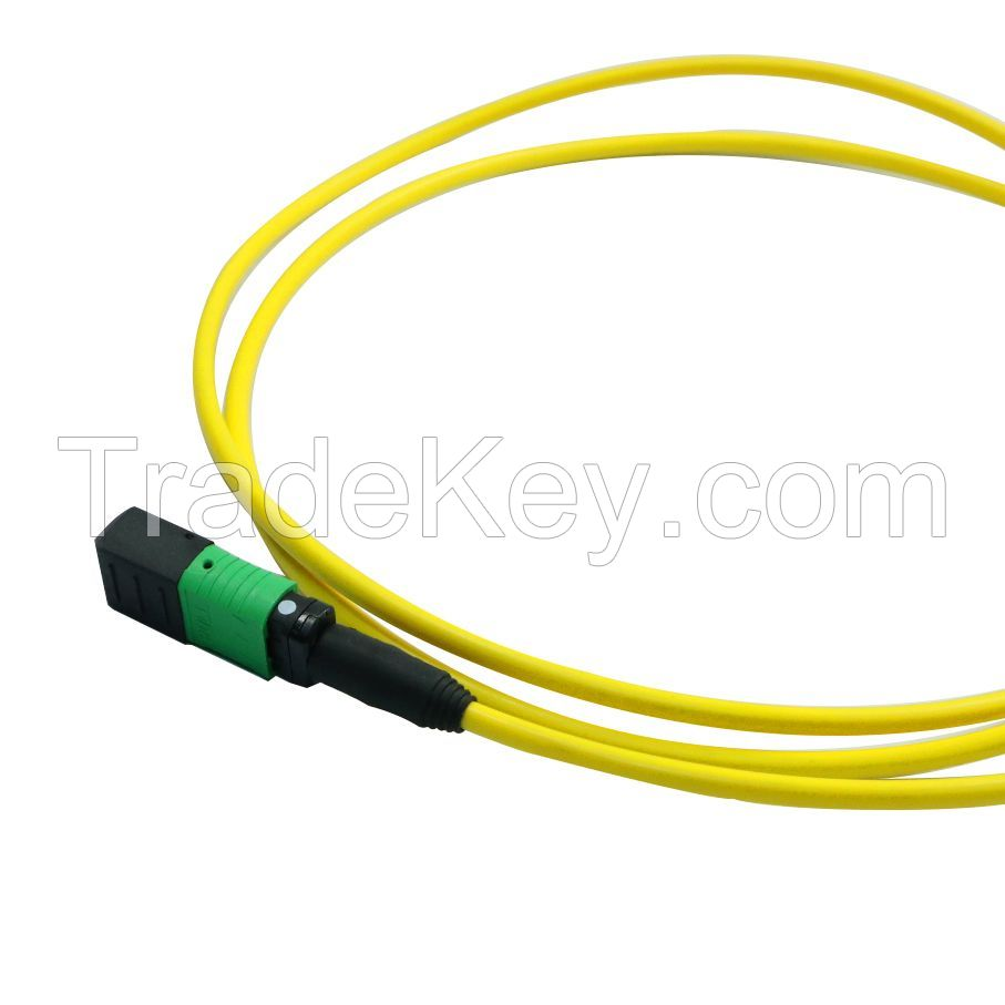Single Mode OS2 MTP MPO Fiber Array Cable