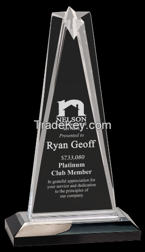 Custom Design Acrylic Award/Acrylic Trophy Award/Acrylic Trophy
