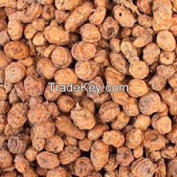 Tiger Nuts | Fresh - Organic - Quality | Best Price