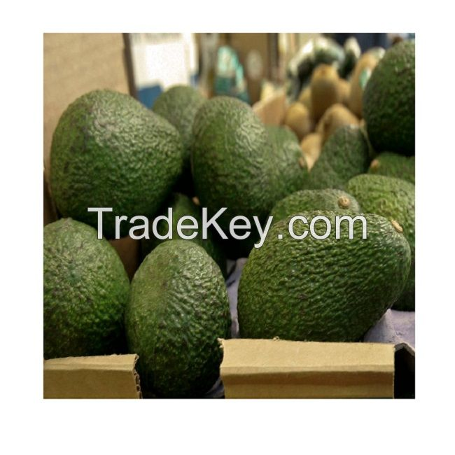 Hass Avocado/Dried Fruit/Fresh Fruit/Frozen Fruit/Other Fruit