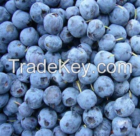 Best Price Fresh Blueberry
