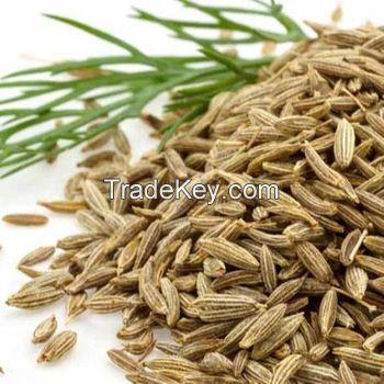 Carom Seeds/Ajwain