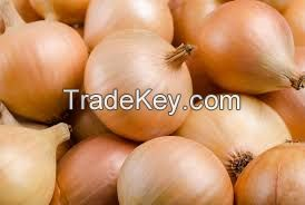 Red Onions/ White Onion