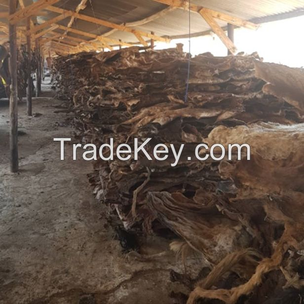 Cow Hides Wet Salted/Dry- Donkey Hides