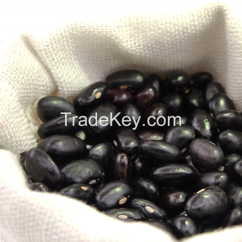 Premium Quality black eyed matpe kidney beans for Sale