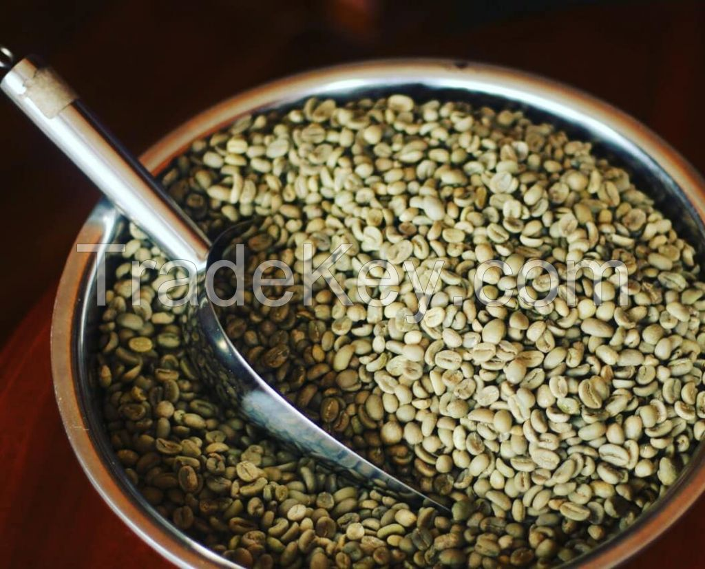 Coffee Gayo Aceh