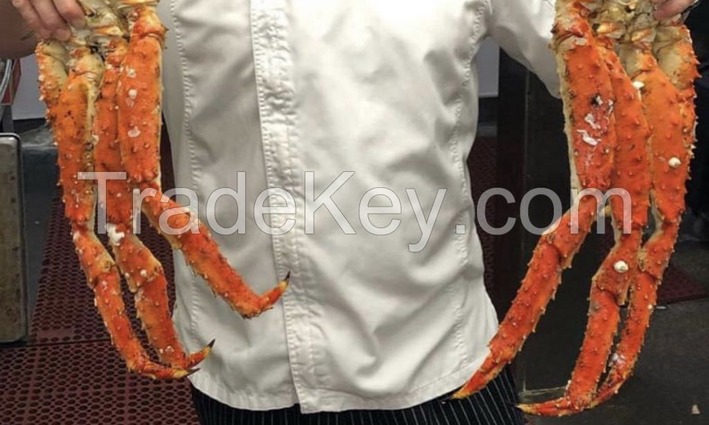 CHEAP FROZEN AND LIVE KING CRAB FOR SALE