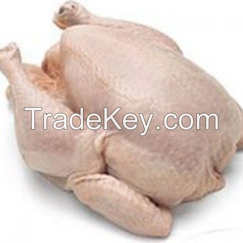 Fresh Grade Halal Whole Frozen Chicken Legs / muscle / Paws for Sale