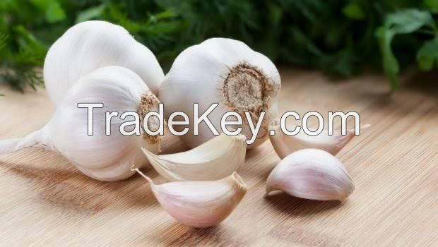 special Nigerian Garlic