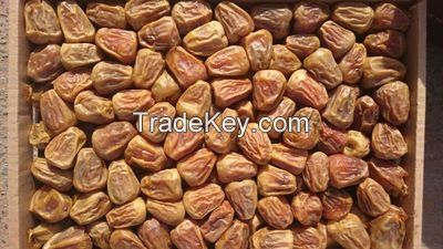 All Kind of Saudi Dates