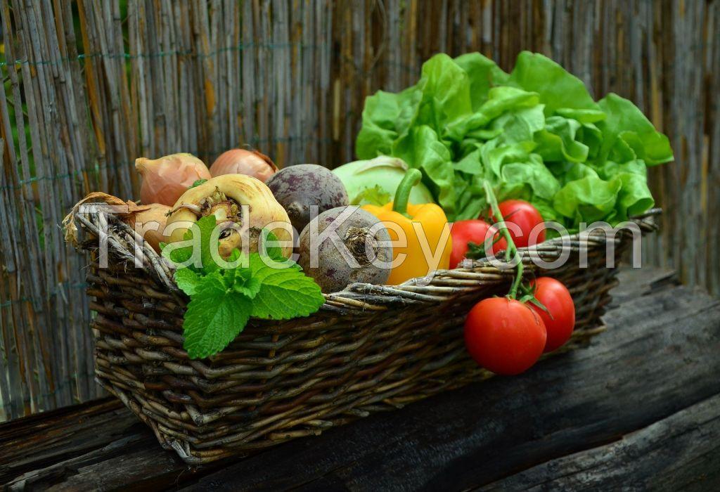 Fresh vegetable of all types