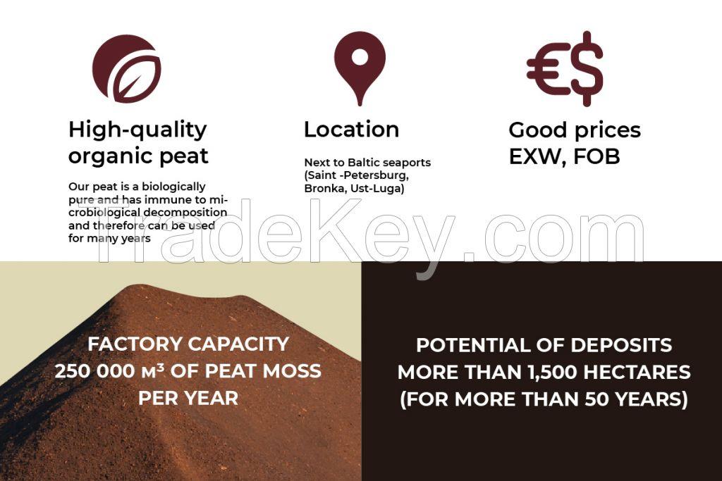 White peat moss