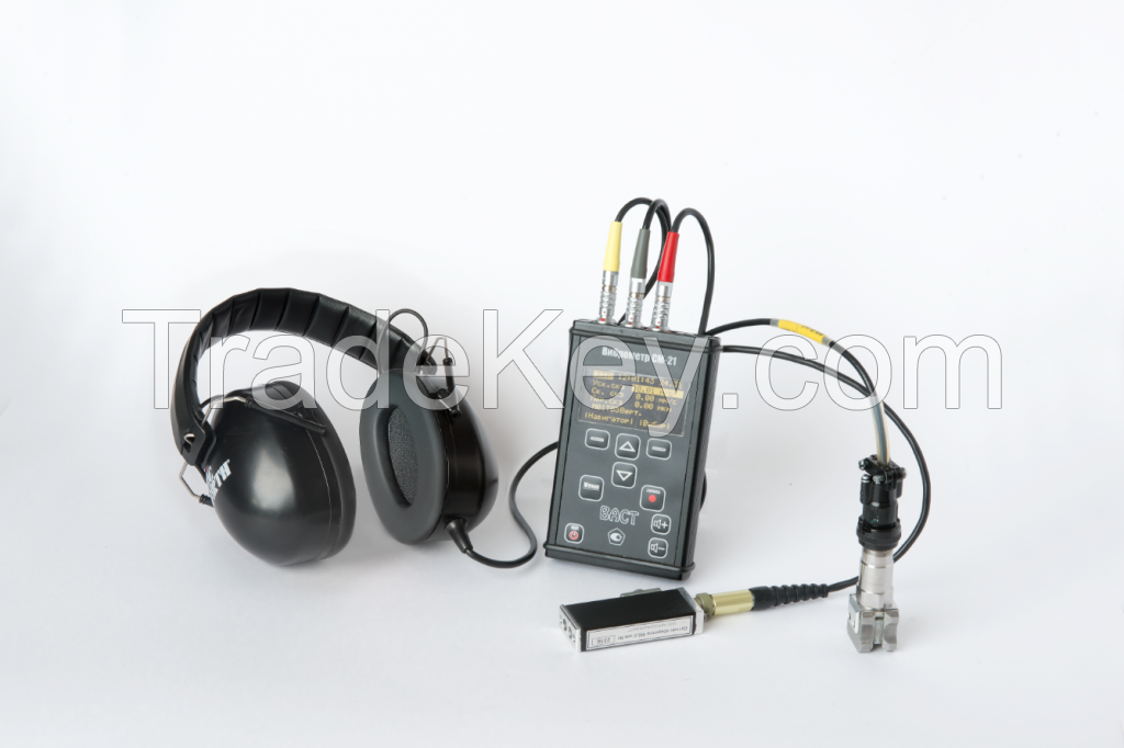 Vibration meter CM-21