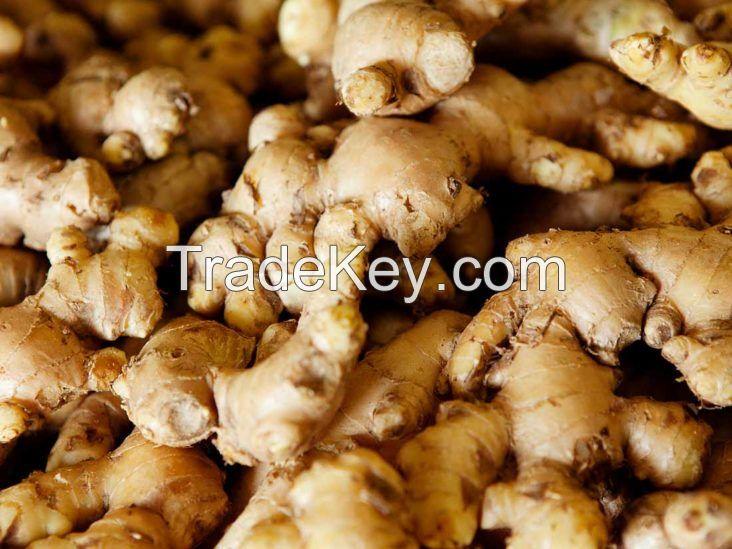 fresh/dried ginger