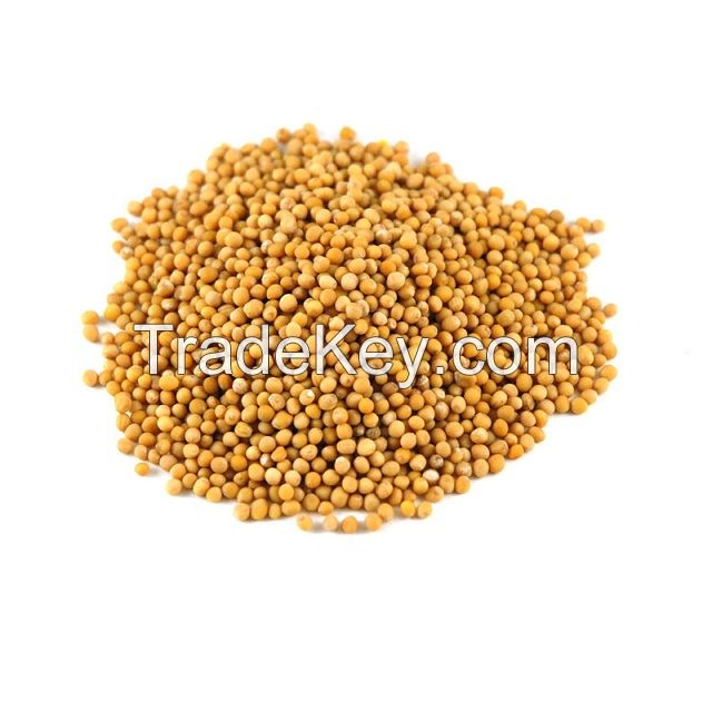 Mustard seeds for sale