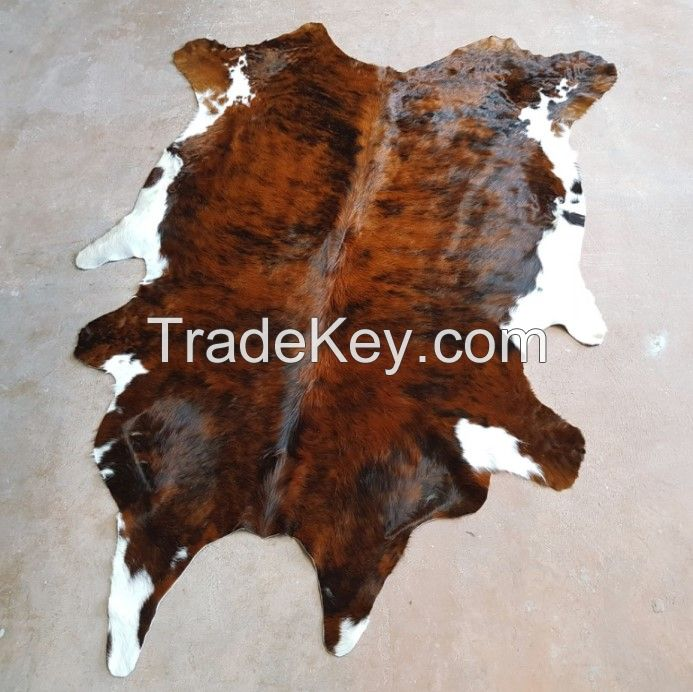 salted Donkey hides for sale