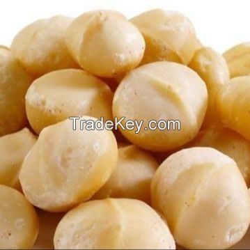 Raw Macadamia Nut (Shell and Shell off)