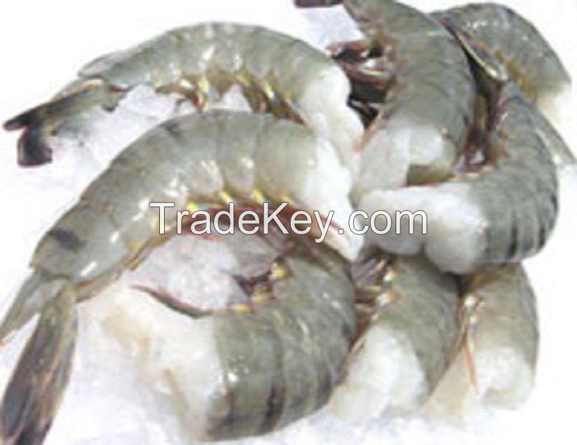 Quality King Prawns , White Shrimps , Black Tiger Shrimps Available