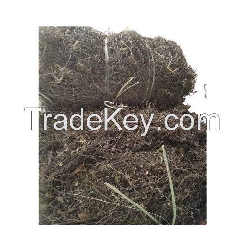 Grass Jelly High Quality Black Grass Jelly From Vietnam Whatsapp 84348545435