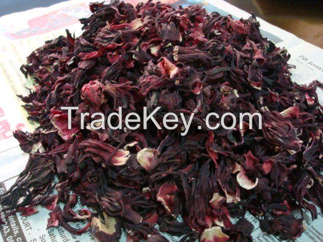 Dried Hibiscus | Exporter - Best Price