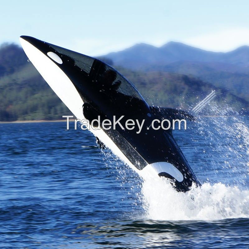 Orca Killer Whale Submersible Y Model