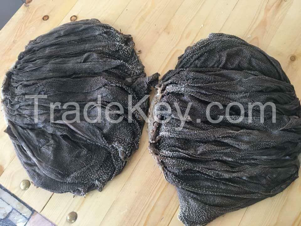 AA Grade Beef and Buffalo Omasum Ready Stock of 1 Container