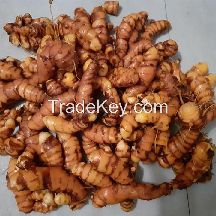 Turmeric From Indonesia