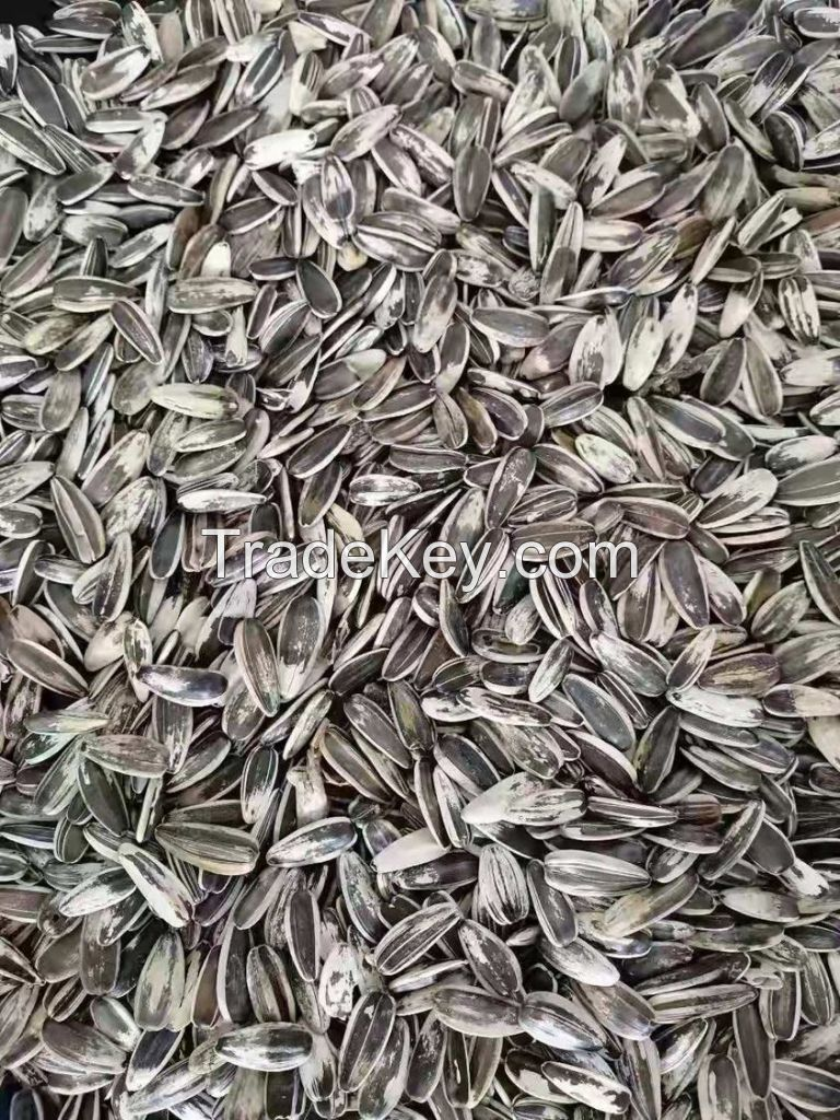 100% Raw sunflower seeds 361 for sale New crop common sunflower seeds Export sunflower seeds