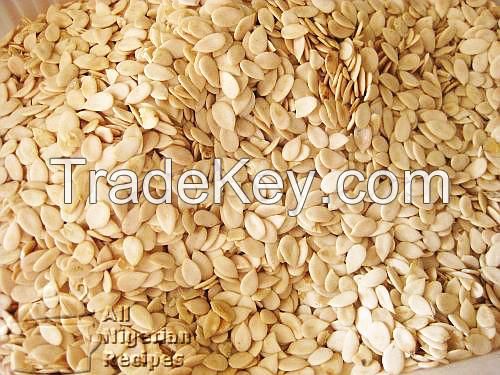 LMDB Melon seeds