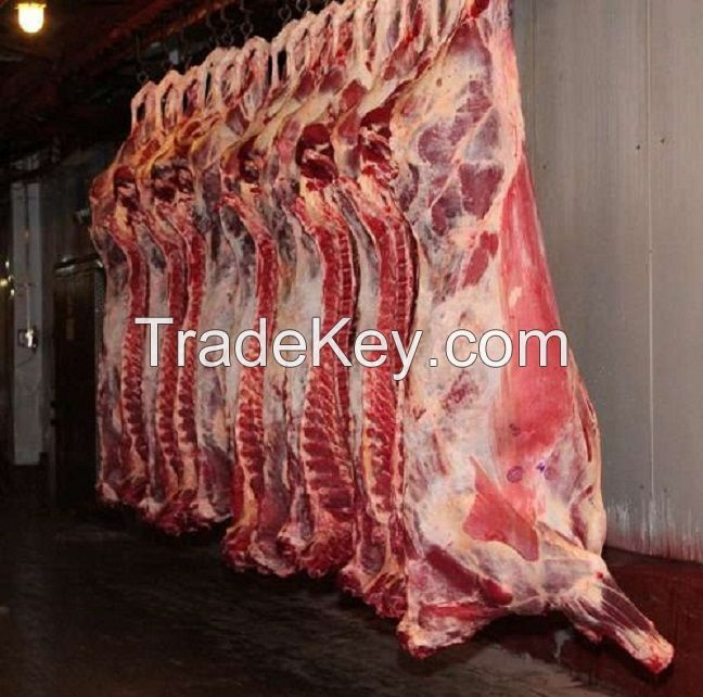 Quality Beef meat