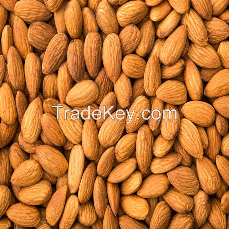 Almond Kernels/Good quality Almond Nuts/Almond Without Shell
