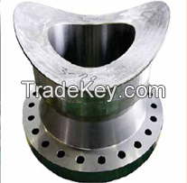 Forgings and Flanges