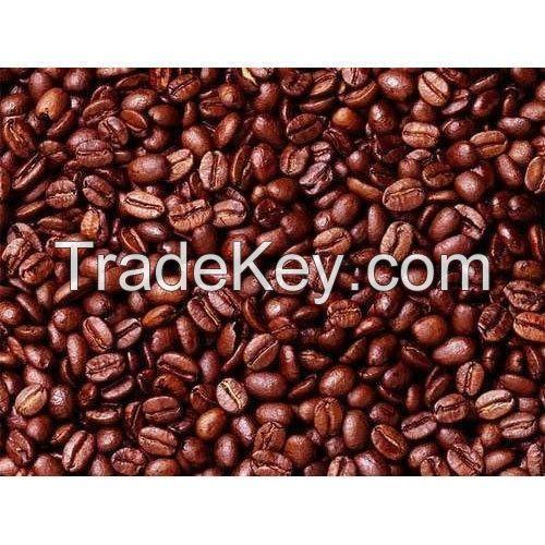 Cocoa Bean Seeds