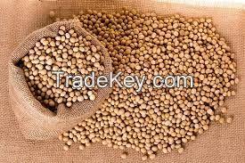 Soya bean - Non GMO
