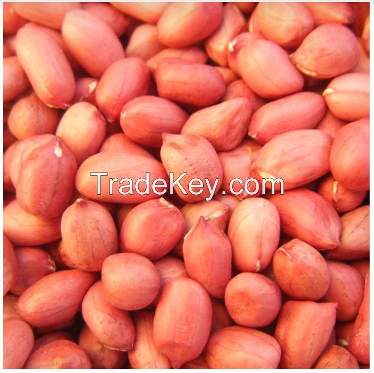 Best Selling Peanut, Ground nut