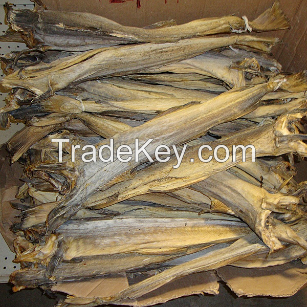 Hot Sale Top Grade Dried Salted Cod Fish
