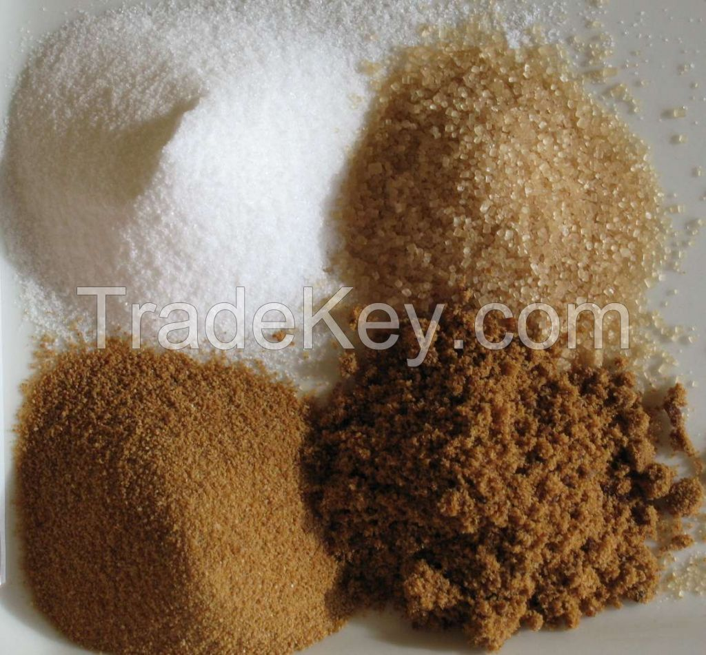 High quality Icumsa 45 white refined sugar Available in Stock.