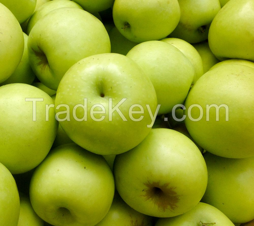 Apple Gala Apples Apple / Green Delicious Red Apple New Fresh Gala Apples