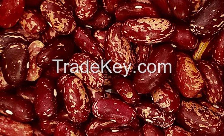 Fresh Beans, Lima Beans, Mung Beans, Soybeans, Butter Beans, Robusta Coffee Beans, Vanila Beans, Vigna Beans, Chickpeas, Lentils