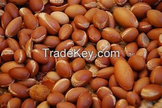 Macadamia nuts, Brazil Nuts, Hazelnuts, Pecan Nuts, Pine Nuts, Punpkin Kernel,
