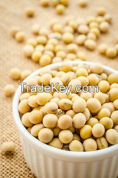 Soybeans, Kidney Beans, Black Beans, Fresh Beans, Mung Beans, Other Beans
