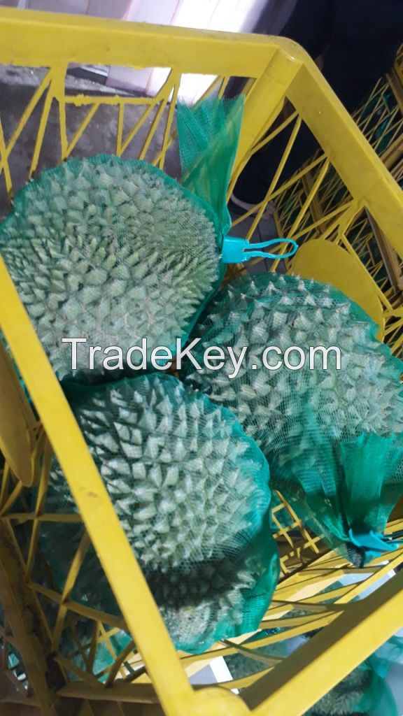 Frozen Durian Fruit and Fresh Durian From Viet Nam +84 898862498